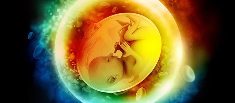 תינוק, עובר, לידה, הריון